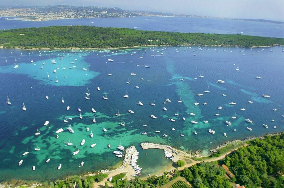 Partez en expérience de Catamaran à Cannes et aux iles
